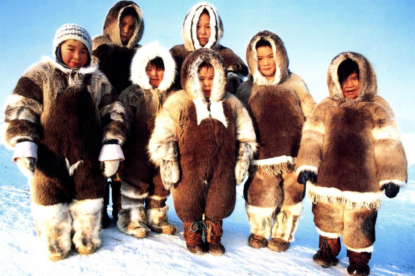 جينات شعب الانويت في القطب الشمالي تكيفت مع البرد القارس اندبندنت عربية