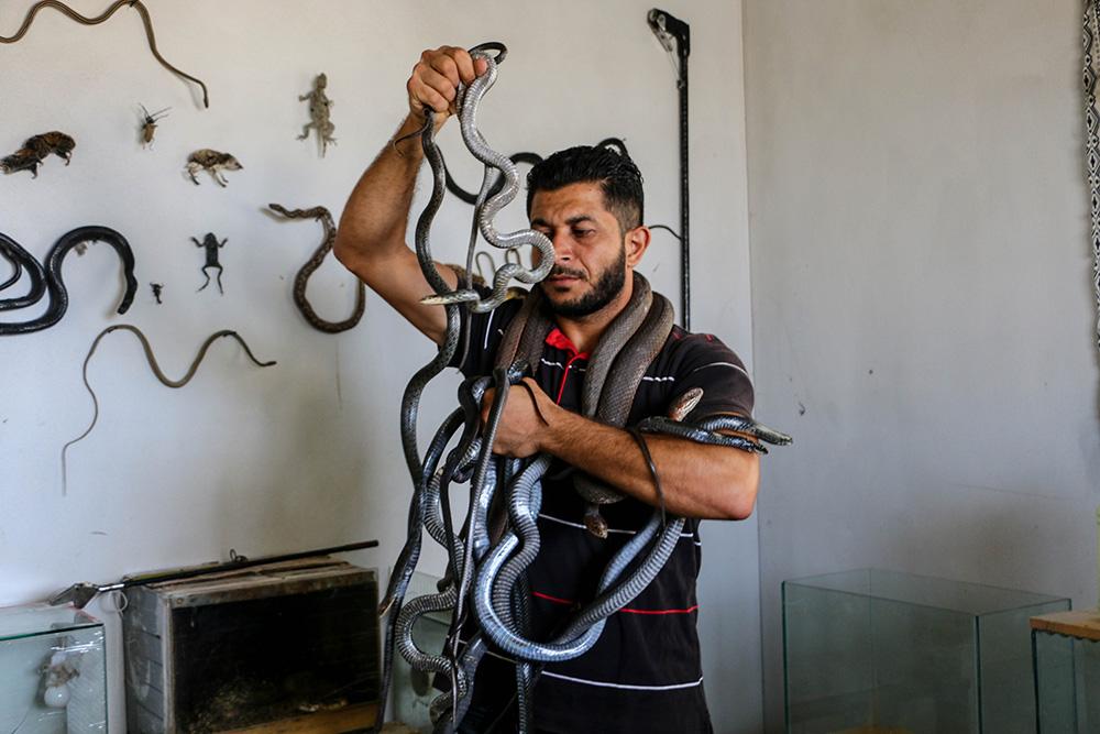 يعيش الفلسطيني عبد الفتاح عسلية في قطاع غزة (أحمد حسب الله)