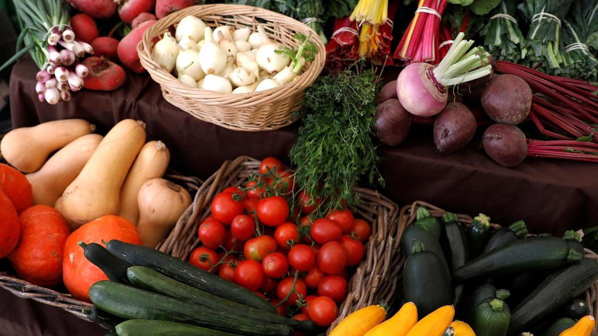 Vegetables-are-shown-at-VeggieWorld-fair-in-Lisbon.JPG.jpg