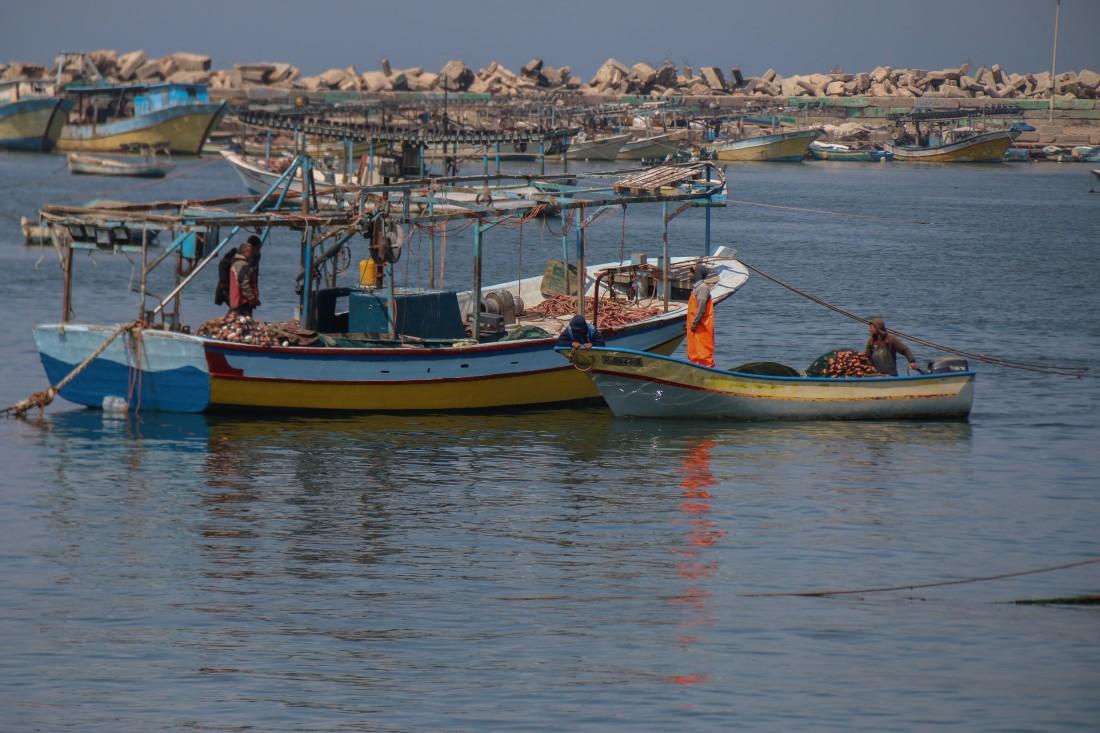 تعيل مهنة الصيد مئات العائلات في قطاع غزة (مريم أبو دقة)