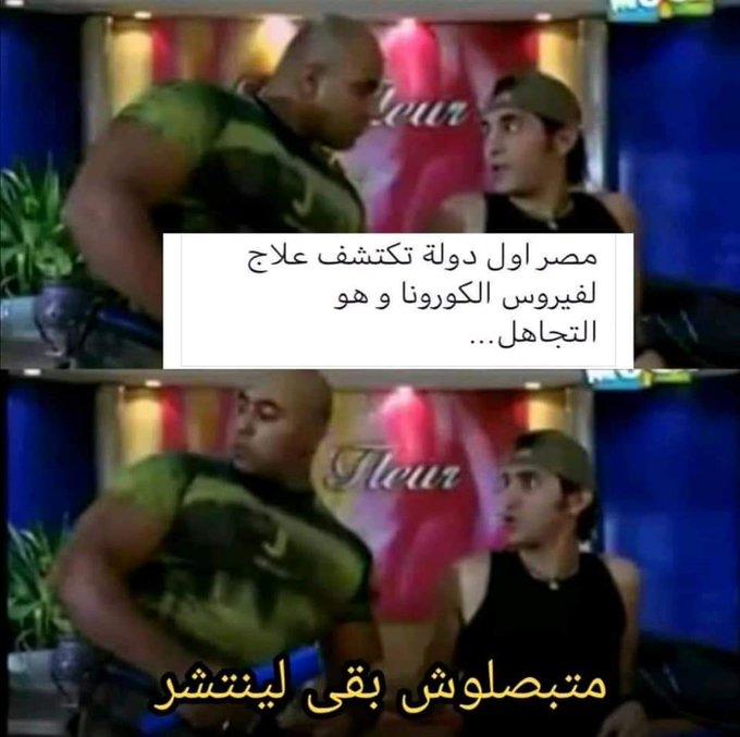 كورونا مصر.jpg
