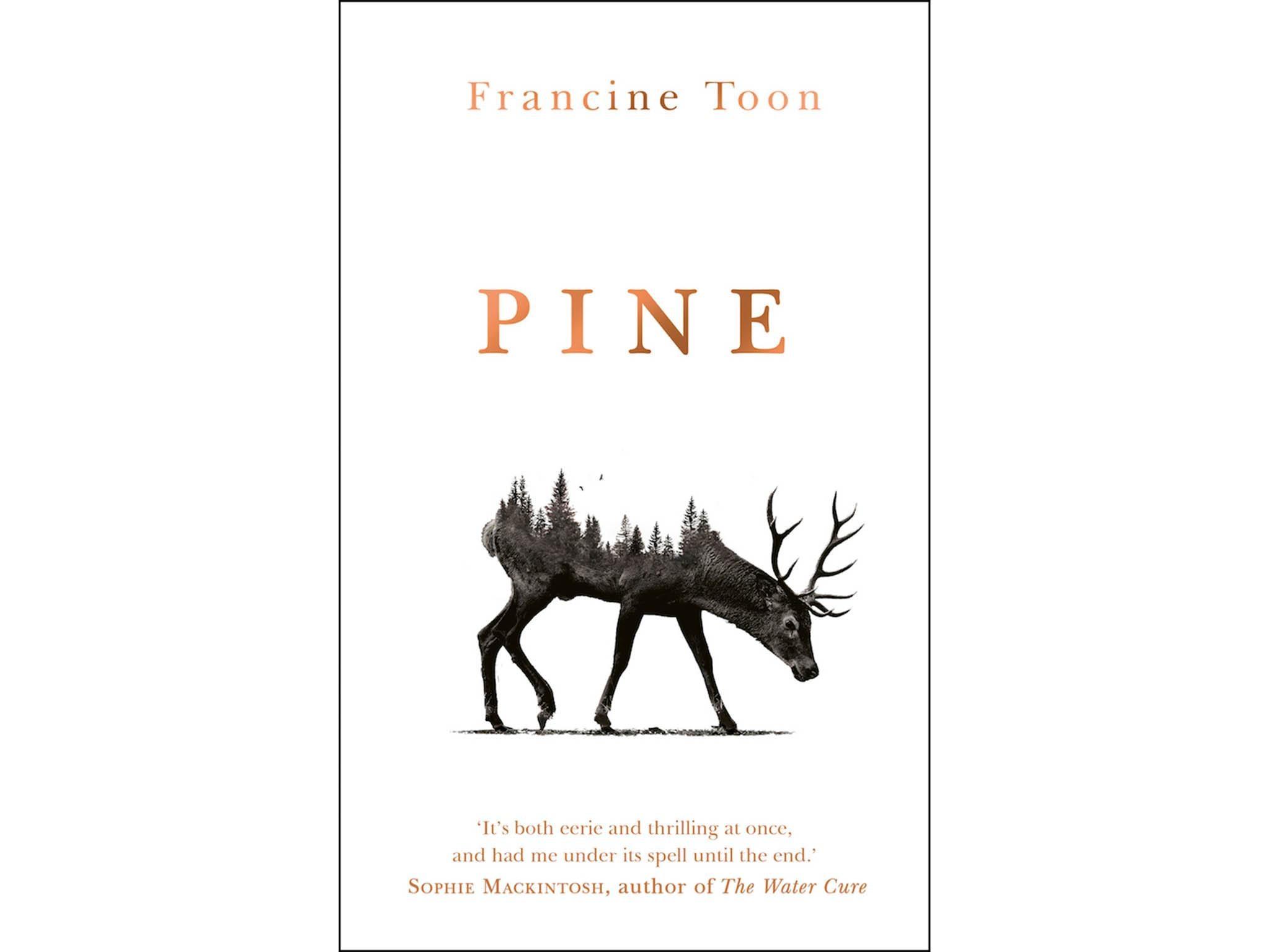 """كتاب """"باين"""" للكاتبة فرانسين تون"""