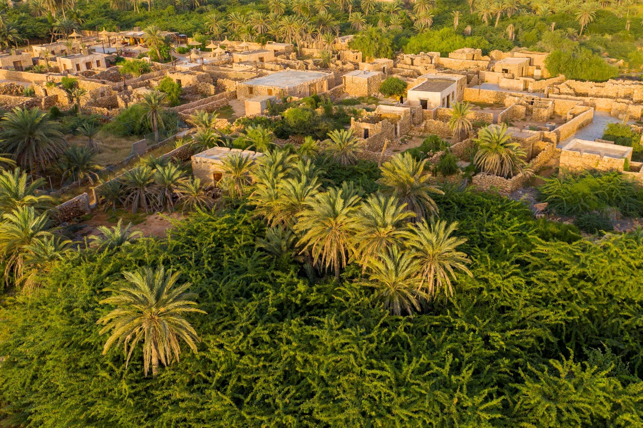 قرية القصار التاريخية. (موقع وزير الثقافة السعودي).jpg
