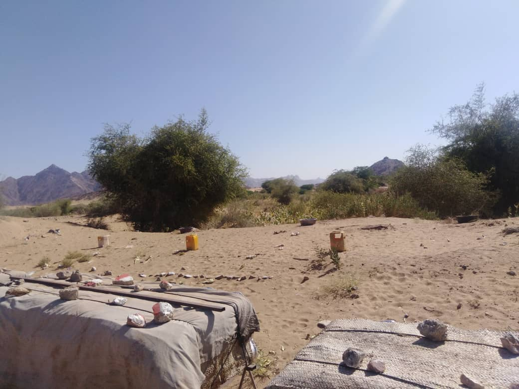 المناحل التي يستخرج منها عسل السدر اليمني. ( اندبندنت عربية)