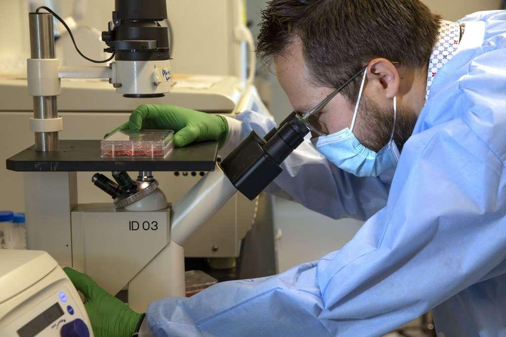 قدمت علوم الجينات مفاجأة سارة في مسار مكافحة جائحة فيروس كورونا ولقاحاته