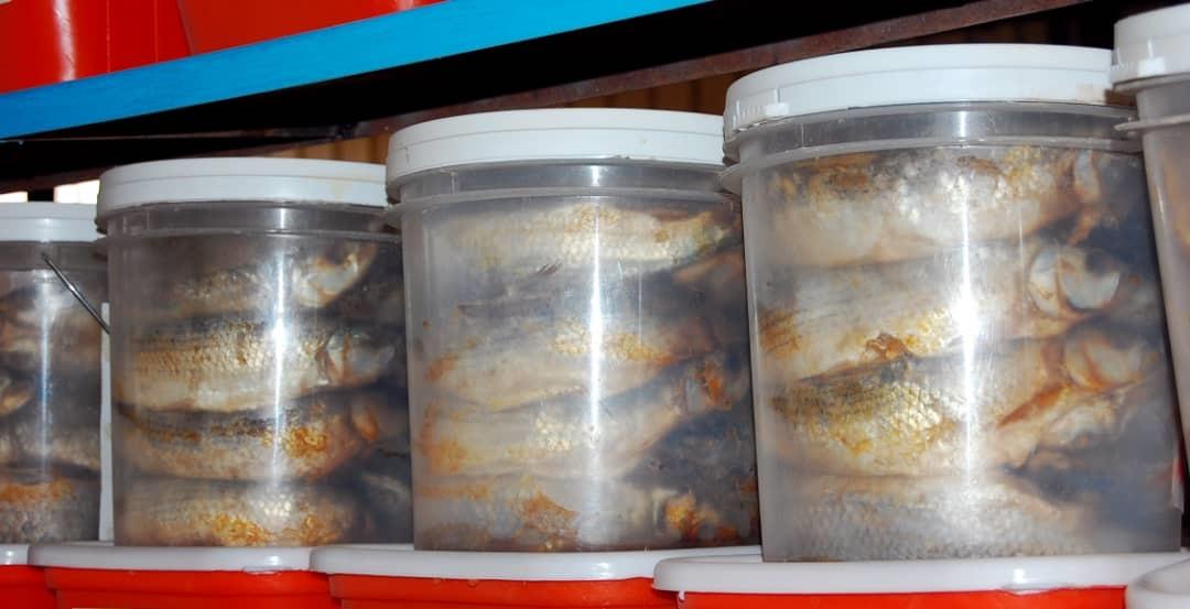 وجبة التركين (حسن حامد).jpg