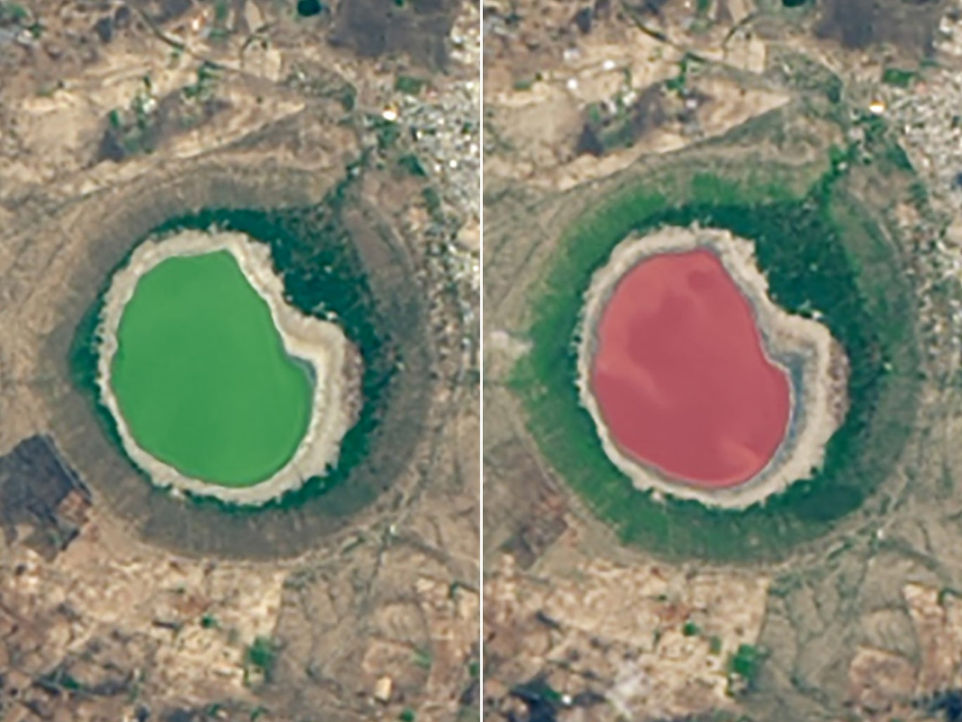 """بحيرة """"لونار"""" في الهند قبل وبعد تحولها إلى اللون الأحمر والأسباب غير معروفة بعد (عن ناسا)"""