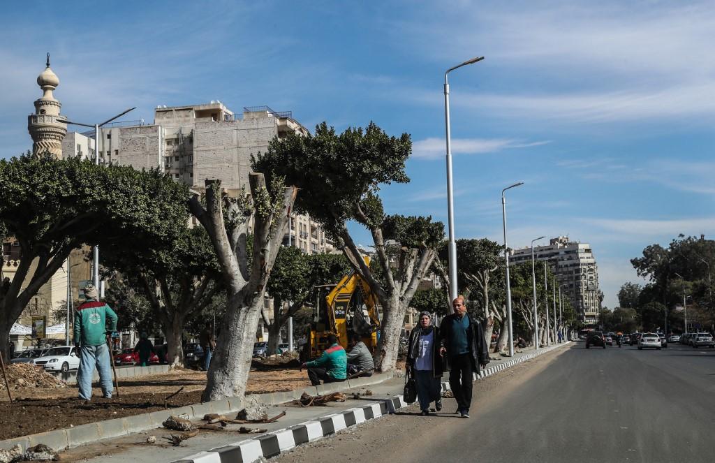 تعاني مصر من انخفاذ حاد في الغطاء النباتي (أ ف ب)
