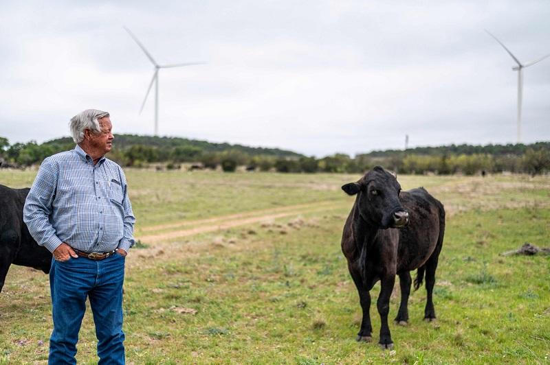 wind turbine texas 2 afp.jpg