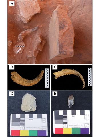 Taş Devrine ait yüzyıllara ait sığır ve diğer parçaların resimleri (Al-Ula'daki Kraliyet Komisyonu)