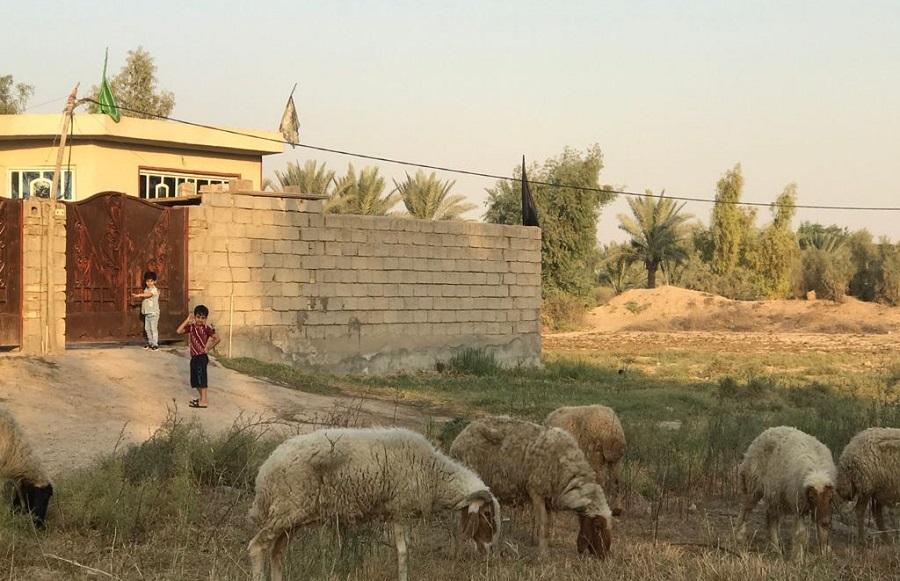 Iraq 2.jpg